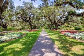 Blow Your Mind Garden-Wise at Brookgreen Gardens
