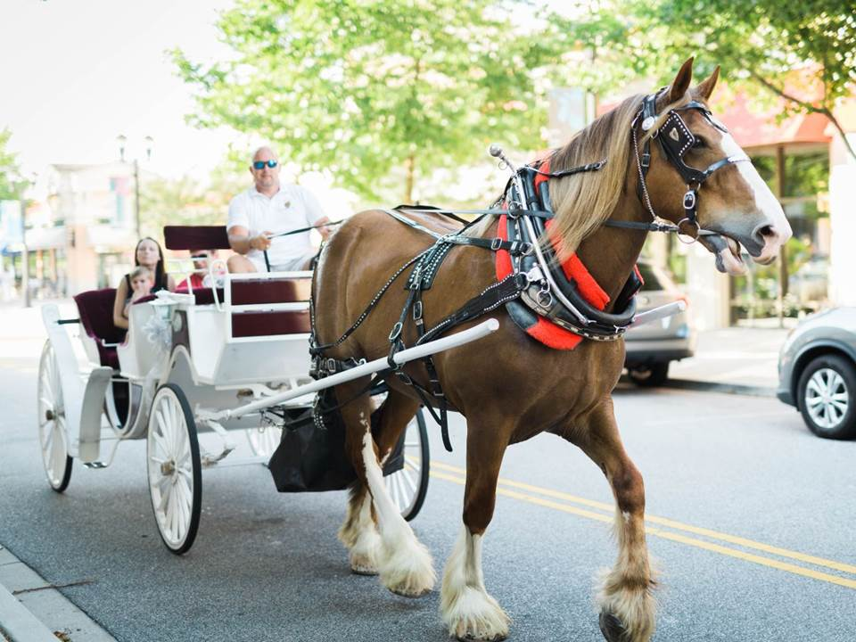 Carriage Rides, Concerts and Outdoor Movies at the Market Common